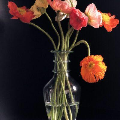 la-soufflerie-bourbe-petite-transparent-vase-with-colorful-poppies