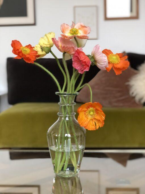 la-soufflerie-bourbe-petite-transparent-vase-with-colorful-poppies-on-table